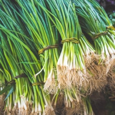 depositphotos_181462668-stock-photo-green-onions